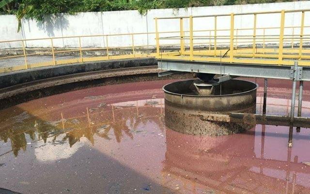 Indah Water akui loji tercemar, namun nafi jadi punca pencemaran sungai Selangor