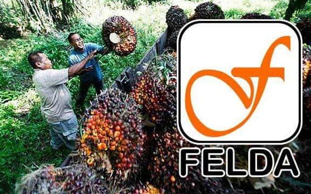 Warga Felda masih keliru objektif kerajaan ambil alih FGV