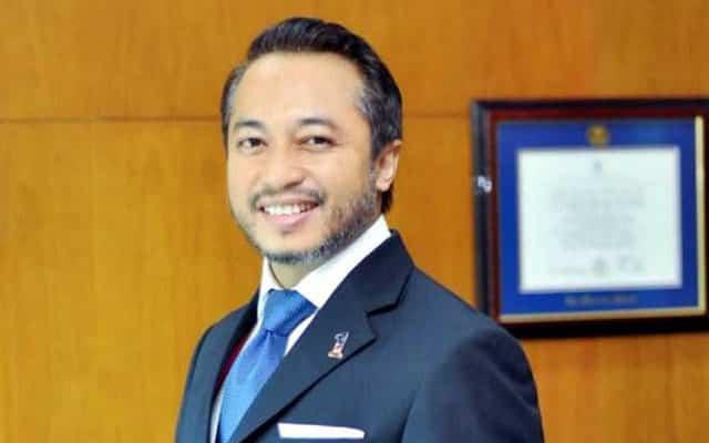 Lantik TPM dari Umno hanya mahu selamatkan Muhyiddin, kata pemimpin Umno