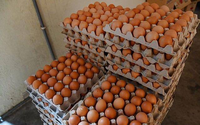Singapura arah telur dari sebuah ladang Malaysia ditarik balik dari pasaran