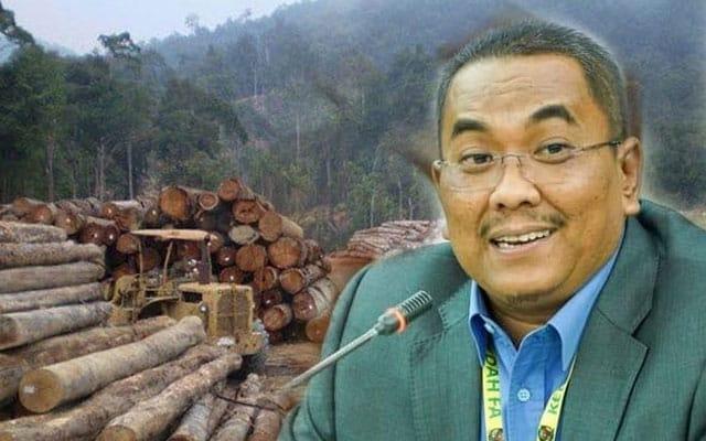 Pembalakan di Kedah diteruskan seperti biasa, kata MB