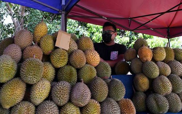 Pesta durian : Anda mungkin dalam pemantauan pihak berkuasa