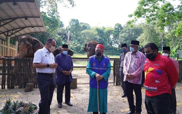 Beri gajah makan, Menteri Agama singgah Zoo Melaka