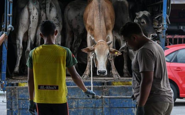 Ibadah korban : Rakyat Selangor patuh SOP – Polis